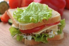 Sandwich with  cutlet Royalty Free Stock Photo