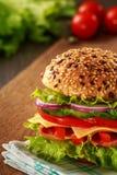 Sandwich délicieux à jambon, à fromage et à salami photos stock