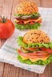 Sandwich délicieux à jambon, à fromage et à salami photo stock