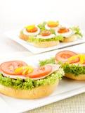 Sandwich délicieux avec du jambon Photos libres de droits