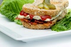 Sandwich de Denver Images libres de droits