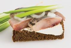 Sandwich de pain noir, un hareng, Photographie stock libre de droits