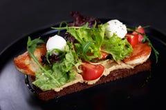 Sandwich de Rye avec le poulet et le mozzarella grillés image libre de droits