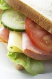 Sandwich del formaggio e del prosciutto Fotografia Stock Libera da Diritti