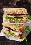 Sandwich. Stock Photos