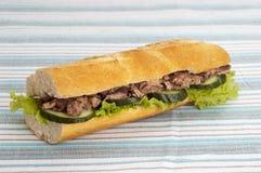 Sandwich dello sgombro fotografie stock