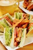 Sandwich di pollo Fotografia Stock Libera da Diritti