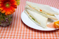 Sandwich on a dish Royalty Free Stock Photo