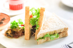 Sandwich. Dish on th e table Royalty Free Stock Photos