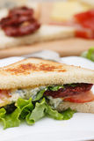 Sandwich with dried tomato and chicken Stock Image