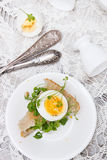 Sandwich with egg and cress Royalty Free Stock Photography