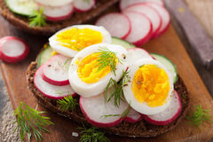 Sandwich with egg radish cucumber Stock Images