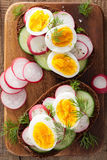 Sandwich with egg radish cucumber Stock Photo