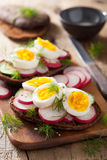 Sandwich with egg radish cucumber Royalty Free Stock Photography
