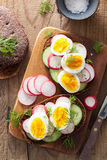 Sandwich with egg radish cucumber Stock Photos