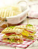 Sandwich with egg tomato cucumber bacon and a sauce Royalty Free Stock Photo