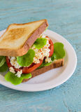 Sandwich with egg, tomato and lettuce on a white plate Royalty Free Stock Photography