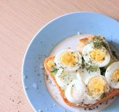 Sandwich with eggs and dry parsley. On blue plate Stock Image