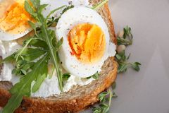 Sandwich with eggs Royalty Free Stock Image
