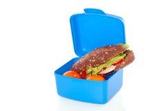 Sandwich en fruit Royalty-vrije Stock Afbeelding