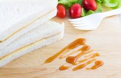 Sandwich en Tomatensaus Royalty-vrije Stock Foto
