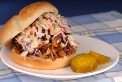 Sandwich et chou tirés à porc Photographie stock