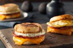 Sandwich fait maison à oeufs de petit déjeuner Photo libre de droits