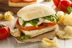 Sandwich fait maison organique à Caprese Images stock