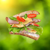 Sandwich with falling ingredients on green Stock Image