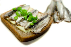 Sandwich with fish and spring onions Royalty Free Stock Image