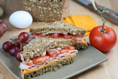 Sandwich and food ingredients Stock Image
