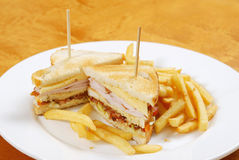 Sandwich with french fries Royalty Free Stock Photo