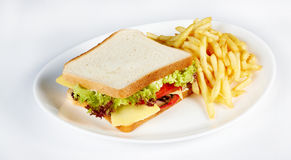 Sandwich with french fries. Taken in studio Royalty Free Stock Photography