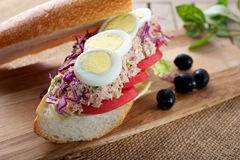 Sandwich. Fresh delicious Tuna Egg Sandwich on cutting board Stock Images