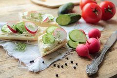 Sandwich with fresh radish and cucumber. Sandwich with cheese, radish, cucumber and fresh fennel Royalty Free Stock Photo