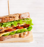 Sandwich. Fresh turkey sandwich with cheese and vegetables royalty free stock photos