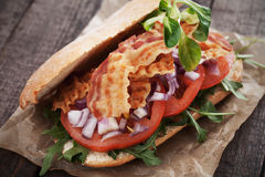 Sandwich with fried bacon Stock Images