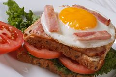 Sandwich with a fried egg and ham Royalty Free Stock Photography