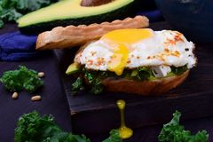 Sandwich with fried egg with liquid yolk. And kale cabbage stock photos