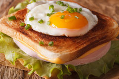 Sandwich with a fried egg, onions, ham and cheese macro. horizon Stock Photos