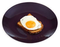 Sandwich from fried egg and toasted rye bread Royalty Free Stock Photo