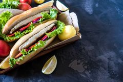 Sandwich with fried fish and vegetables. Balik ekmek - turkish f Stock Images