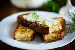 Sandwich of fried toasts with garlic melted cheese Stock Photography