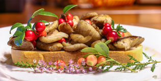 A sandwich with fried wild yellow boletuses and red whortleberry Stock Images