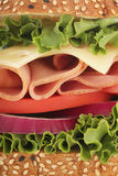 Sandwich goodness. Macro closeup detail of a ham and Swiss cheese sandwich Stock Images
