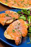 Sandwich with gravlax salmon Royalty Free Stock Images