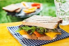 Sandwich grillé avec du fromage et la fusée Image stock