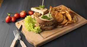 Sandwich with grilled meat, chips, lettuce and cherry tomatoes royalty free stock image