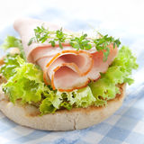 Sandwich with ham Stock Photos