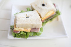 Sandwich ham and cheese stock photos